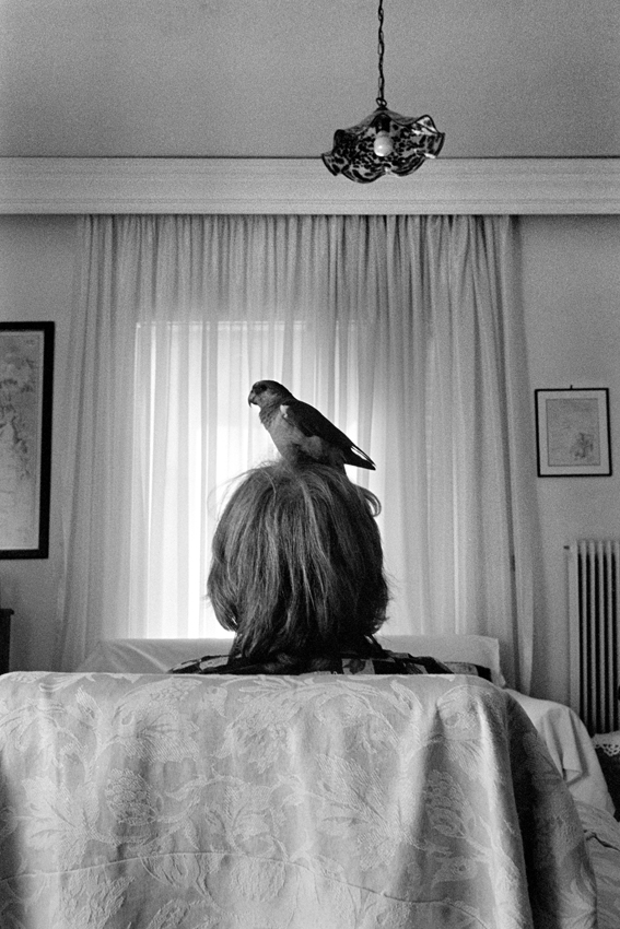 Katerina Kaloudi - People and Animals - Untitled.